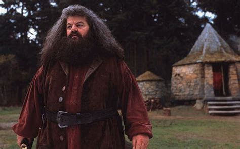 hagrid house harry potter creator j k rowling is building her own hagrid hut