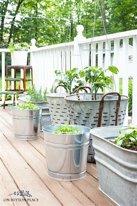 easy container gardens easy container herb garden with strawberries tomatoes