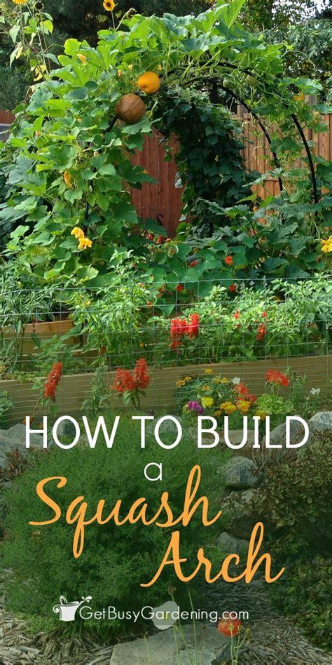 Veggie Garden Arch 1000 Ideas About Vegetable Gardening On
