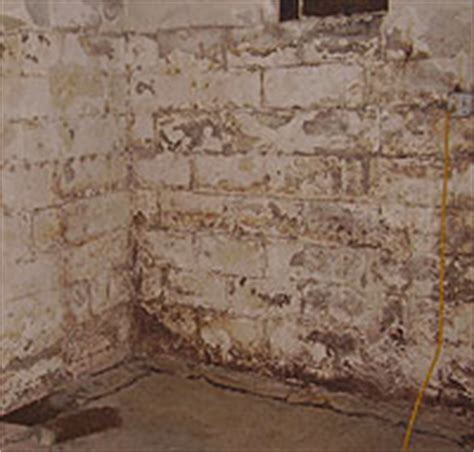 how to keep moisture out of basement keep your ohio basement steps to drying a basement