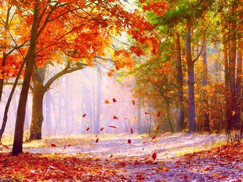 1920x1080 autumn connecticut desktop pc fall wallpaper qygjxz