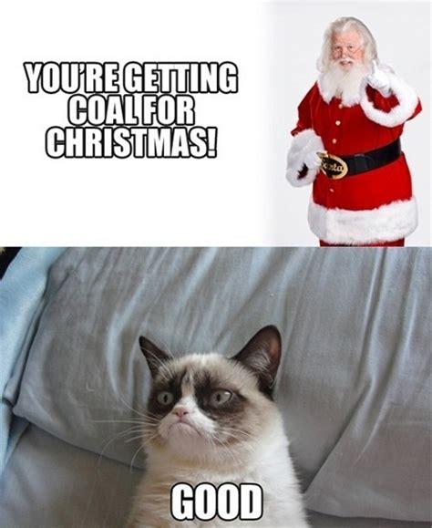 grumpy cat s christmas present by xxspiritwolf2000xx on