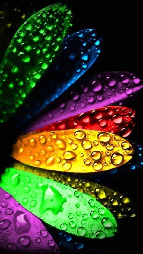 colorful wallpaper for lumia wallpaper full hd 1080 x 1920 smartphone colorful petals