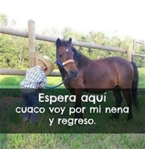 imagenes tiernas vaqueras 1000 images about cowgirls y cowboys on pinterest