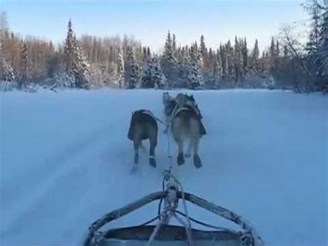 sled commands iditarod sled packing doovi