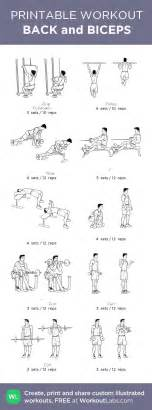 best 25 back and bicep workout ideas on back