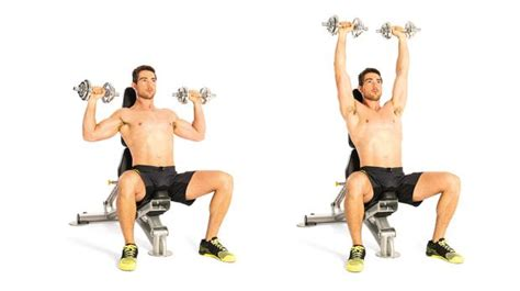 seated dumbbell bench press the best upper body workout 4 coach