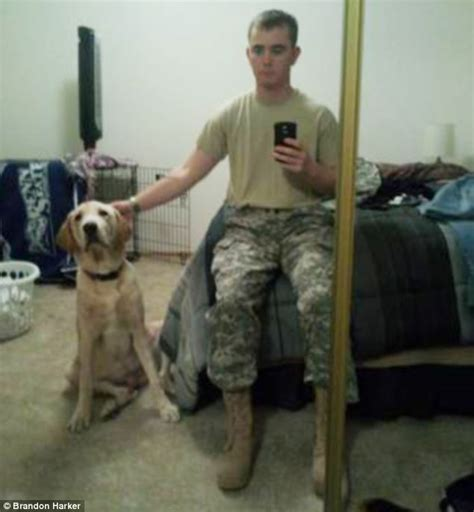 craigslist lab puppies soldier returns from afghanistan to find a friend sold his beloved labrador retriever