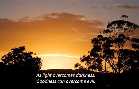 light overcomes darkness quotes light overcomes darkness quote via carol s country