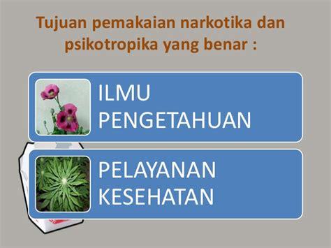 tujuan membuat makalah narkoba narkoba psikotropika dan dak bagi pemakainya