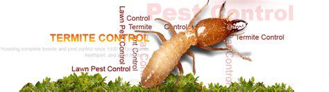 termite control rays termite pest control