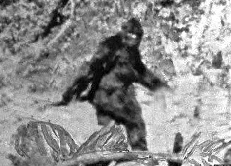 the of bigfoot american sasquatch hunters bigfoot in america 2013