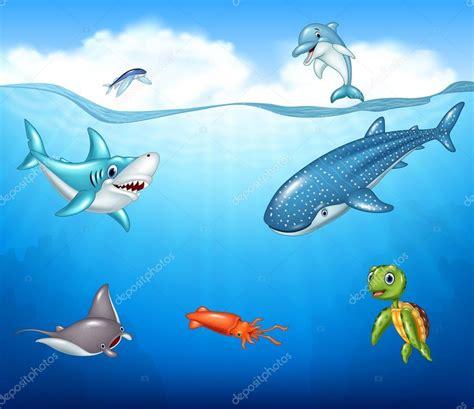 imagenes animales marinos animados dibujos animados de animales marinos vector de stock