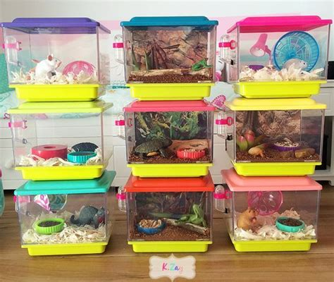 diy doll crafts diy american pet cages how are these great