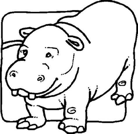4 hippopotamus animal coloring pages