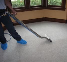 Rug Cleaning Services Melbourne by Cleaning Services Melbourne Allsafe 03 9021 6889