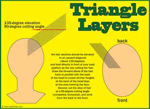 framing hair cutting technique how to cut triangle layers