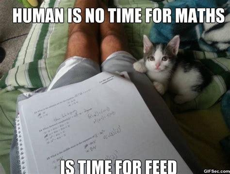 Funny Human Memes - meme human is no time jpg