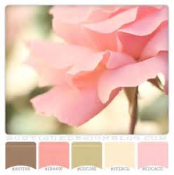 pink color scheme brown green and coral color scheme perfectly pink color