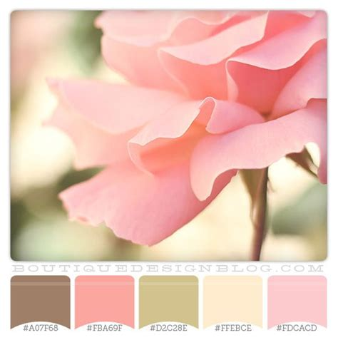 color combination with pink brown green and coral color scheme perfectly pink color