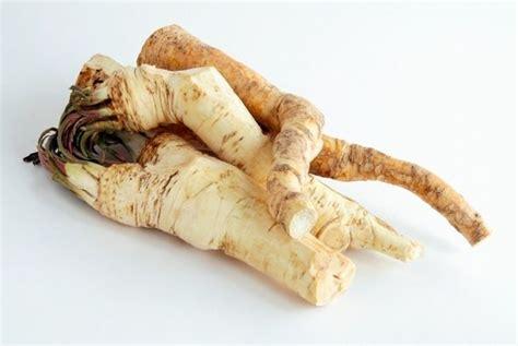 alimenti per ingrossare il radici albero botanica albero radici utilizzo
