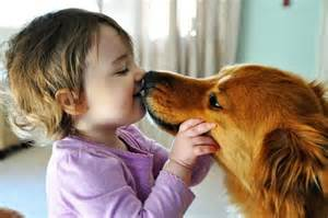Kiss your dog to improve your health