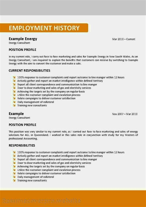 Show Resume Format by Exles Of Resumes The Most Important Thing On Your Resume Executive Summary For Show Me A 89