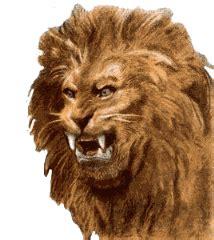 imagenes de leones en movimiento gifs animados de leones animaciones de leones