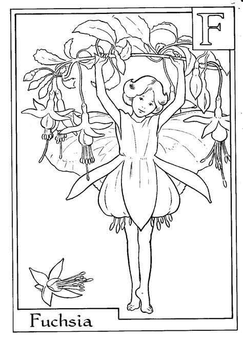 fairy colouring printable page f is for fuschia used to