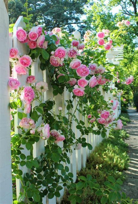 Garten Gestalten Und Dekorieren by Gartenplanung 44 Gartengestaltungsideen Und Deko Zum