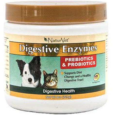 probiotic for dogs digestive enzymes probiotics for dogs cats naturvet 8 oz