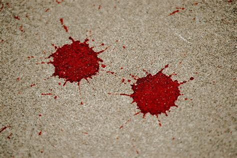 bloodstain pattern photography bloodstain pattern analysis flickr photo sharing