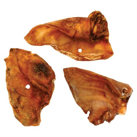 are pig ears safe for dogs large pig ears for dogs twootz