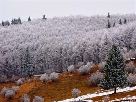 fotos rumania invierno banco de im 225 genes para ver disfrutar y compartir 10