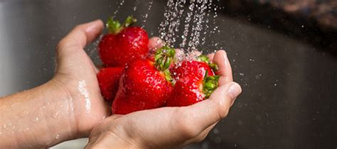 how to freeze strawberries and other berries igift pty ltd