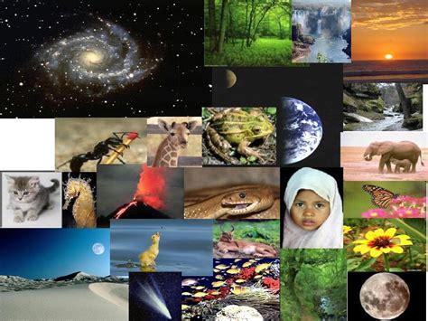 imagenes sobre ciencias naturales ciencias naturales juaniriarte s blog