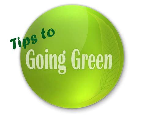 Going Green In Your Home | how to go green in your home interiorholic com