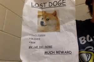New Doge Meme - where are those bad engligh dog memes page 2 off topic