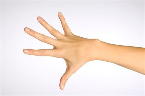 de la mano de 8416601070 c 243 mo ejercitar las manos