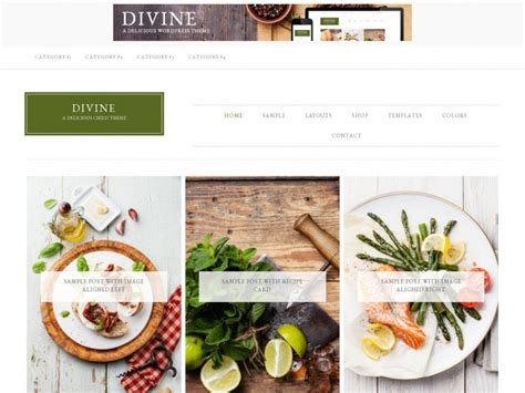 60 best wordpress food blog themes 2018