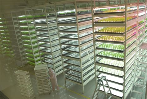 Greenhouse Shed Plans by Future Appears Bright For Indoor Veggie Farms The Japan