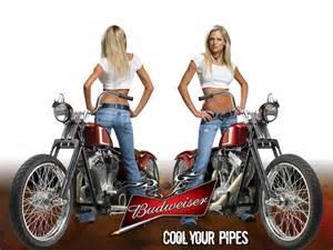 What Kind Of Beer Is Coors Light Girls Computer Wallpapers Budweiser Girls Wallpaper