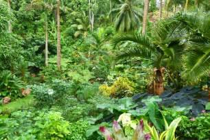 wandering among the plants at hunte s gardens barbados