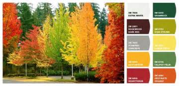fall color scheme fall color schemes create your own carrie