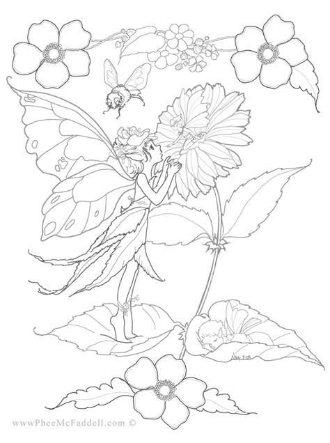 coloring pages fairies and flowers flower fairies coloring page coloring pages pinterest