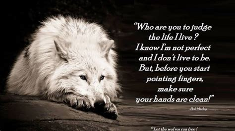 wolves images wolf poems hd wallpaper and background