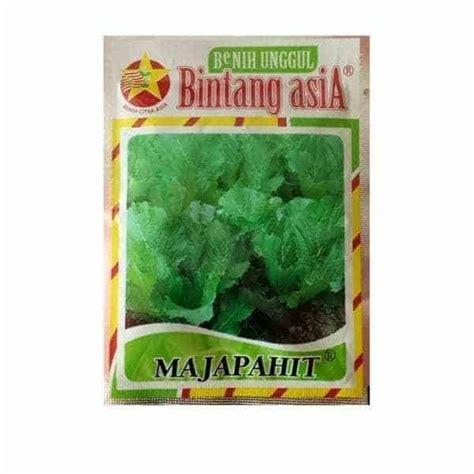 Jual Bibit Sawi Bandung jual benih sawi pahit majapahit 25 gram bintang asia