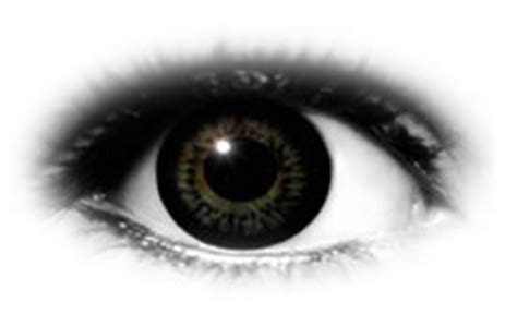 Softlens Colourvue Big Dolly Black colourvue bigeyes dolly black contact lenses optyk rozmus
