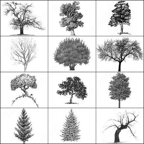 tree pattern brush tree brush photoshop brushes in photoshop brushes abr