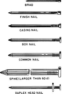 nail article  nail    dictionary